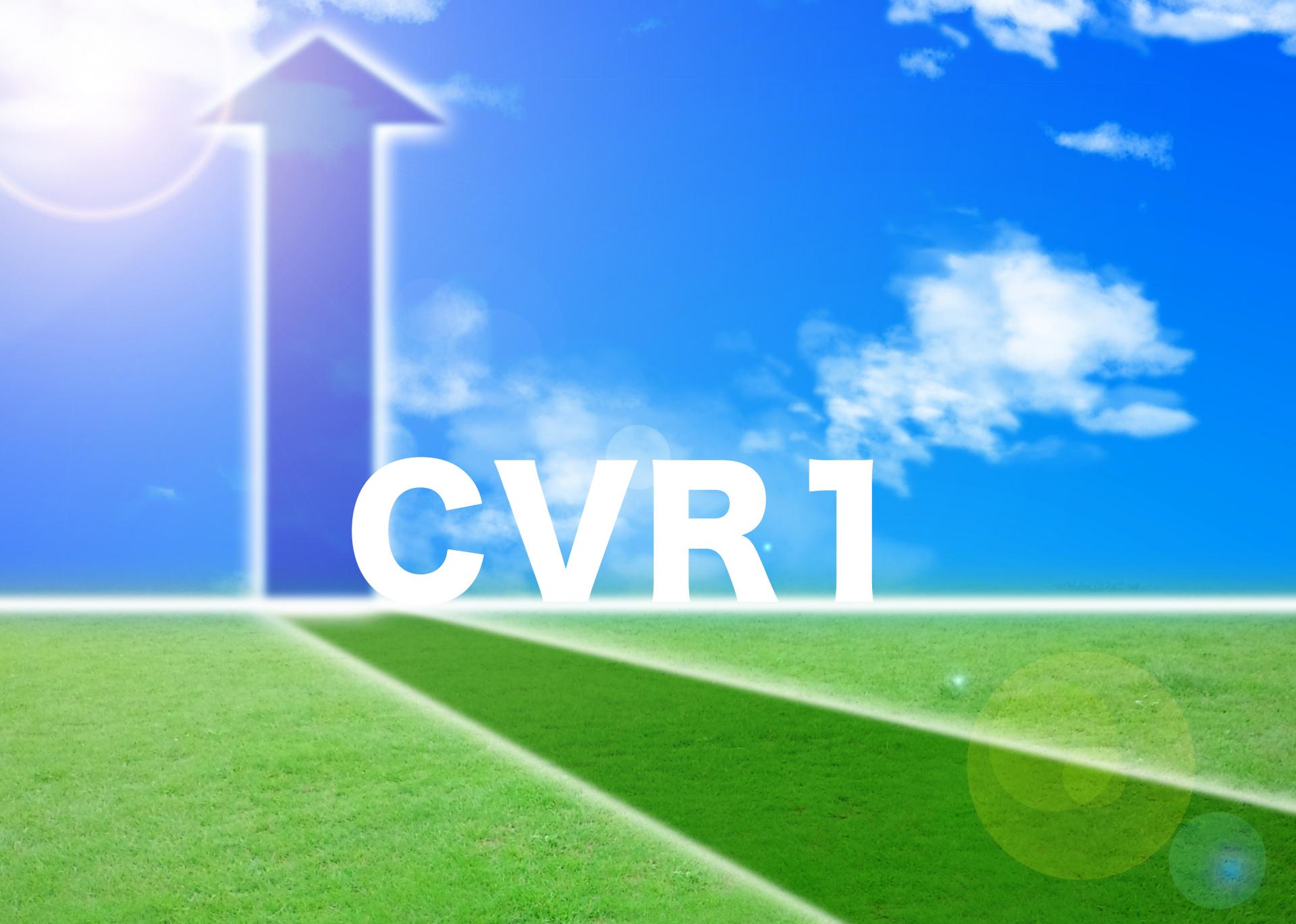 楽天での転換率(CVR)増加(1)