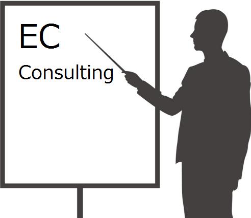 ecコンサルは実際のところ何をしてくれるの?